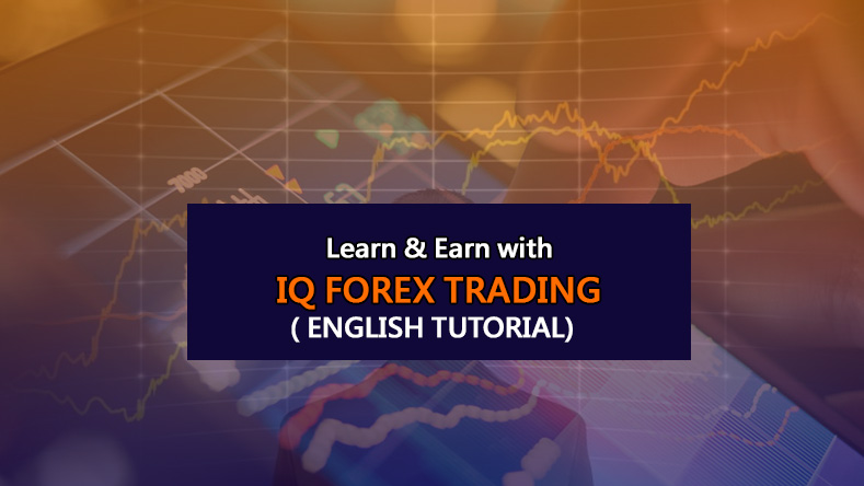 IQ-Forex-Trading-in-English